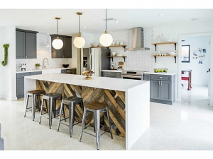 Modern kitchen Wilton Manors